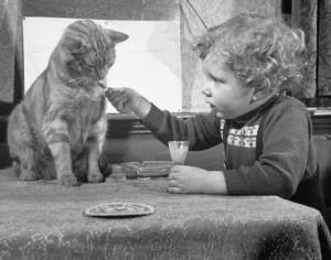 Copil dă de mâncare pisicii
